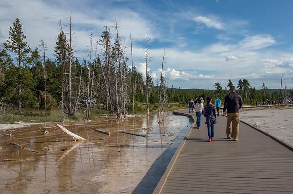 Geothermal Stroll