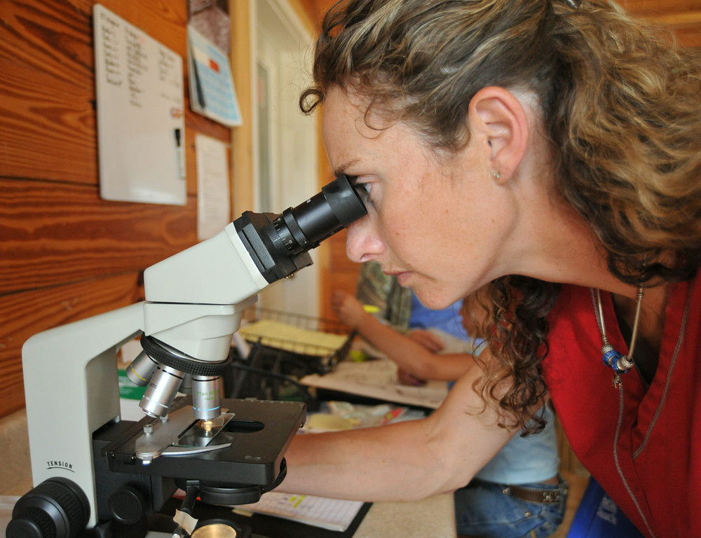 Veterinarian Candice Carden examines the quality of the semen sample from the stallion in the artificial insemination building at the Jan Pamela Ranch near Big Horn. Semen from the stallion will be used to artificially inseminate mares for breeding.