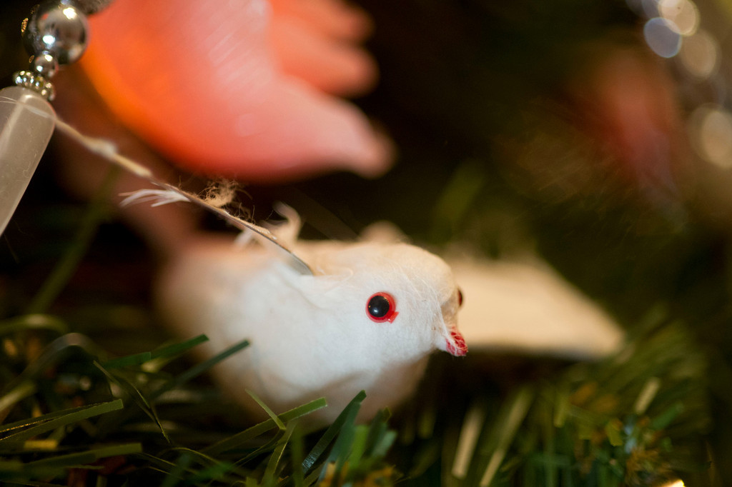 A small bird ornament is tucked away in a Christmas tree.