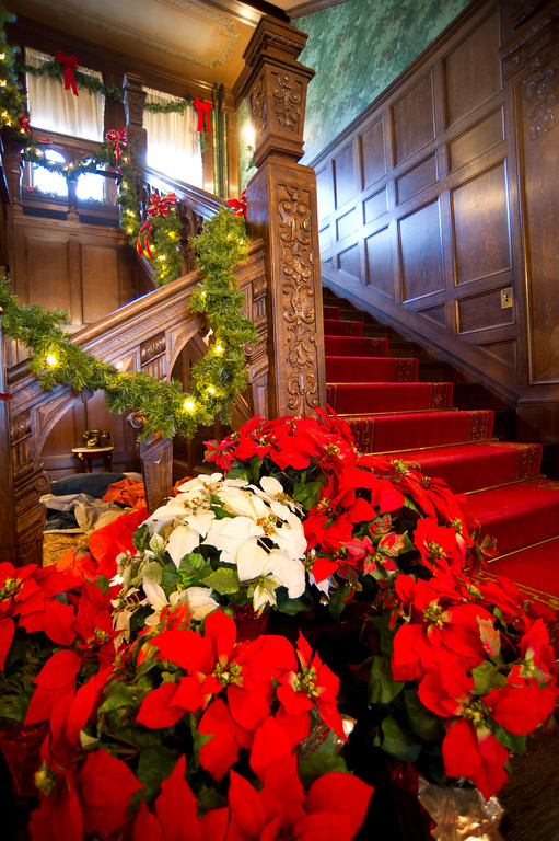An arrangement of poinsettias is seen at the bottom of the main stairway.