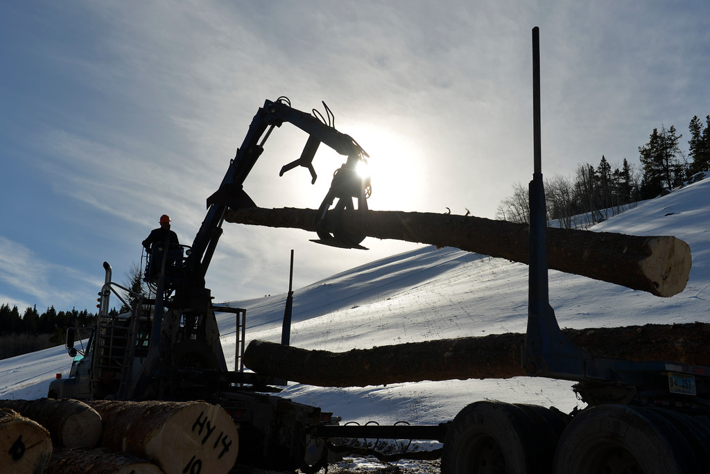 Justin Sheely | The Sheridan Press<br /> <br /> Frank Burnham of J&F Logging and Loading uses a lift to load a logging truck from Wyoming State Land near Steamboat point in the Bighorn mountains Wednesday, Jan. 17, 2018.
