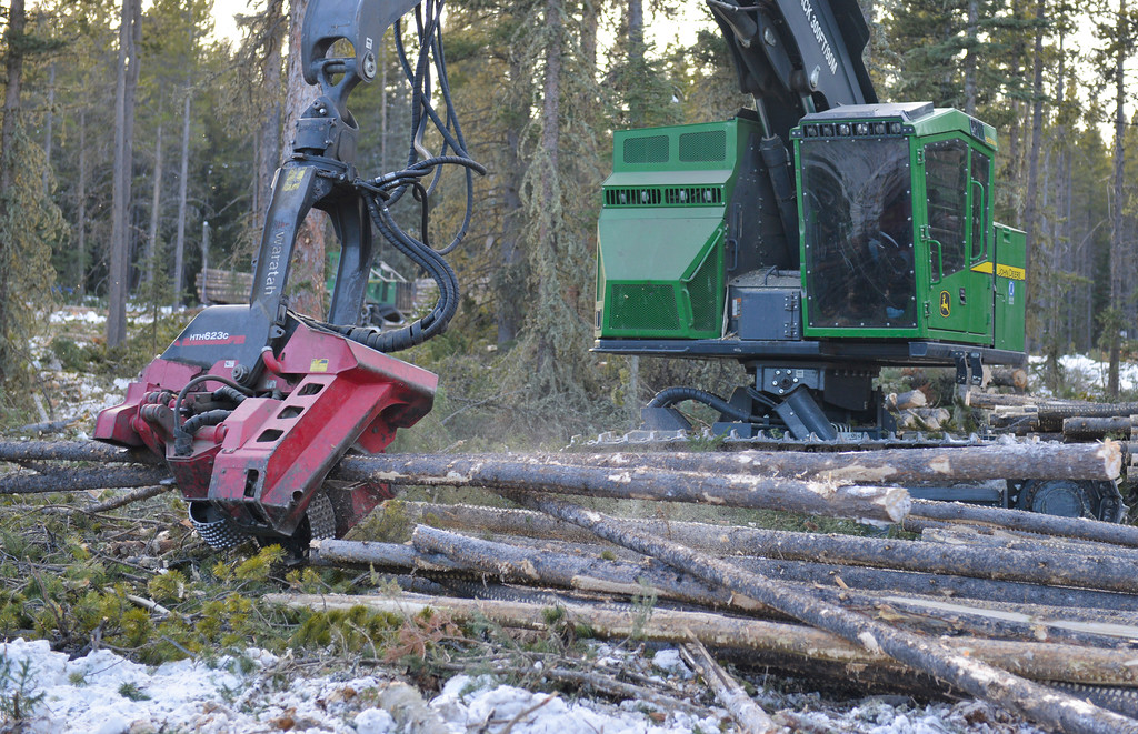 Justin Sheely | The Sheridan Press<br /> <br /> A dangle head processor measures and cuts a downed tree at the Johnson Creek sale site on Cutler Hill in the Bighorn National Forest Wednesday, Jan. 17, 2018.