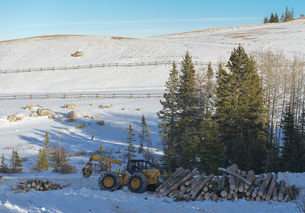 Justin Sheely | The Sheridan Press<br /> <br /> Dennis Lee uses a grappler skidder to create a clean stack of logs for collection on the Wyoming State Land near Steamboat point in the Bighorn mountains Wednesday, Jan. 17, 2018.