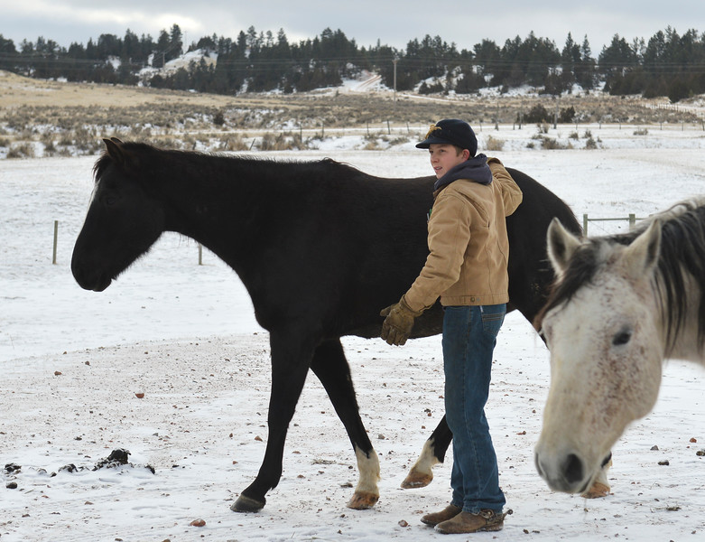Justin Sheely | The Sheridan Press<br /> Arvada-Clearmont High School freshman Cameron Klatt visits with the horses at the Quarter-Circle 7 ranch near Arvada Friday, Dec. 22, 2017. The brothers live on a ranch in Campbell County, about 40-miles from their high school in Clearmont. Every day the brothers balance work on the ranch, school and playing on the Panthers basketball team.
