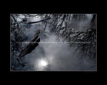 015-reflections-wdsm-29feb16-20x16-bbp-6572