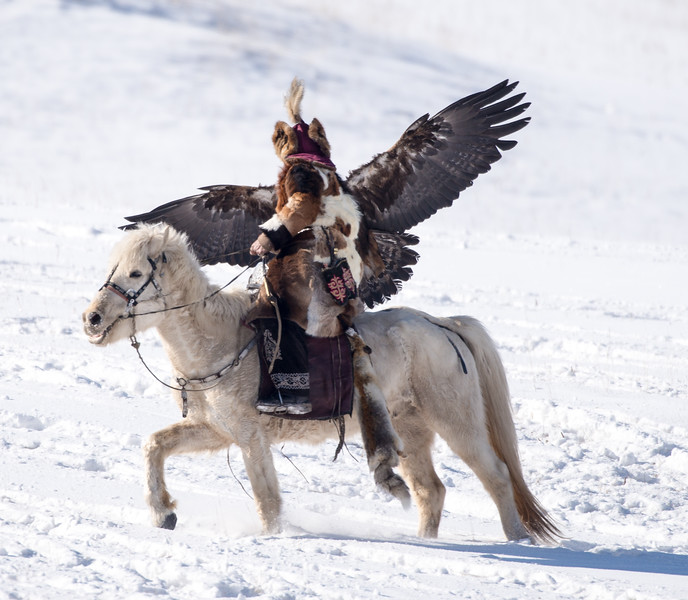 Kazakh eagle hunters.  This is a competition on the training of the golden eagles.