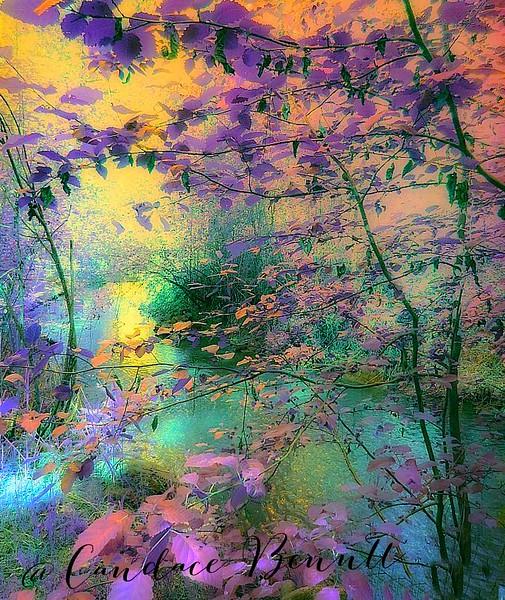 Inside Fairyland