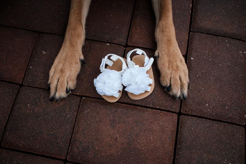 Kymbre Maternity Photos