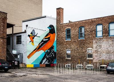Rockford Street Art