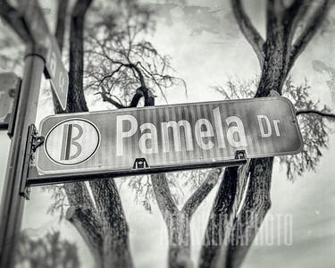 Pamela Dr.