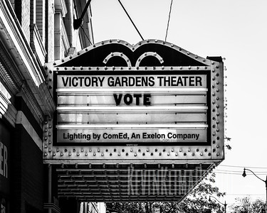 Victory Gardens Theater - Vote
