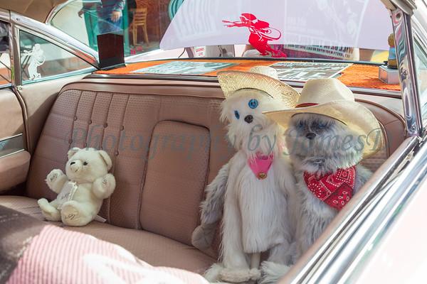 The_Classic_at_Pismo_Beach_Car_Show_2016_20160618-668