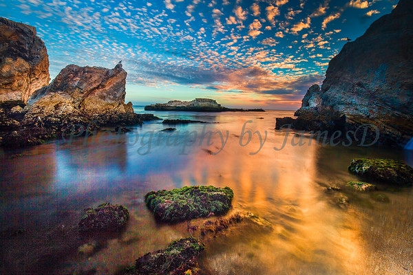 A Golden Sunset at the Cove (20150928)