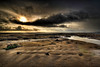 Pismo_Storm (19 5x13)