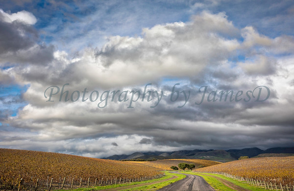 Edna Ranch Road 20161214_02