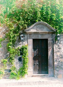 Wood Door on Ivy Wall