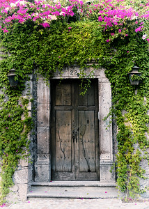 Ivy Door with Flowers