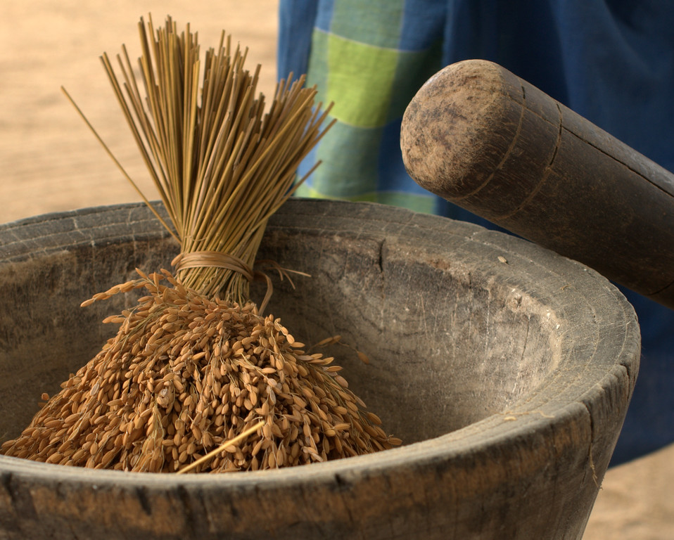 Saramaccan rice with a mortar and pestle in Pokigron