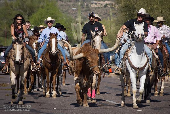 2015 Cave Creek Fiesta Days Parade