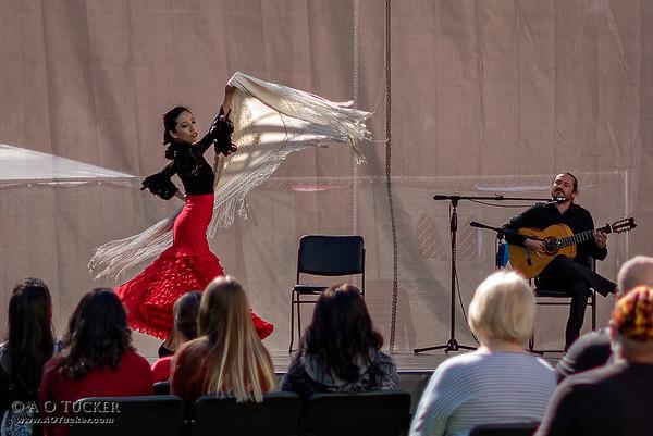 Yumi Al Rosa Flamenco