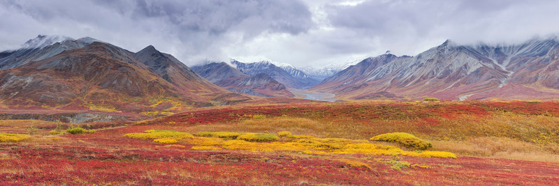 A Beautiful Fall Day Near Eillson Visitor Center - Denali National Park