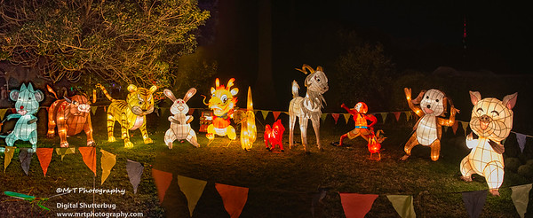 The 12 animals of the zodiac: Rat, Ox, Tiger, Rabbit, Dragon, Snake, Horse, Goat, Rooster, Monkey, Dog, Pig.  Lantern Festival 2017 Auckland Domain