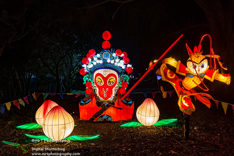 The Monkey King Lantern Festival 2017 Auckland Domain