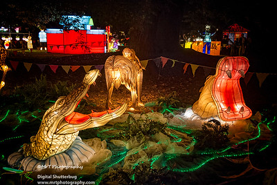 Croc and hippoi Lantern Festival 2017 Auckland Domain