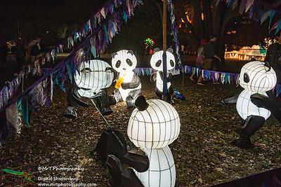 Pandas Lantern Festival 2017 Auckland Domain