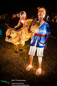 Buffalo ride Lantern Festival 2017 Auckland Domain