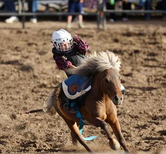 Modoc County Rodeo