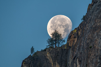 Moon Set. Yosemite Valley.
