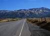 Hills, Near San Simeon, CA (Pentax 645)