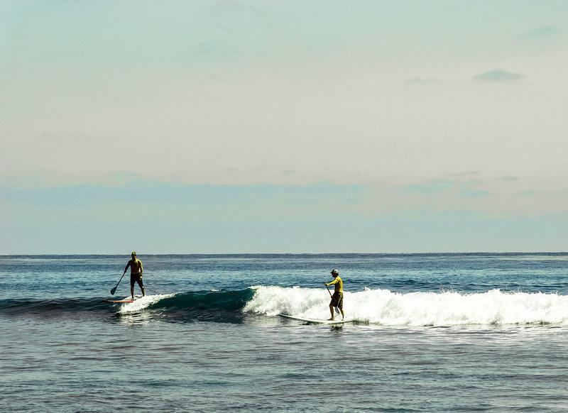 Paddle-Board Surfers, Swami's Beach, Encinitas, CA