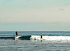 Paddle-Board Surfers, Swami's Beach, Encinitas, CA