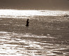 Dark Water, Swami's, Encinitas, CA
