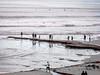 Swami's Point, At Low Tide, 4, Encinitas, CA