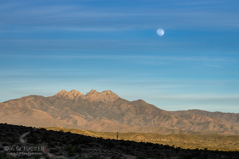 Wolf Moon Over Four Peaks