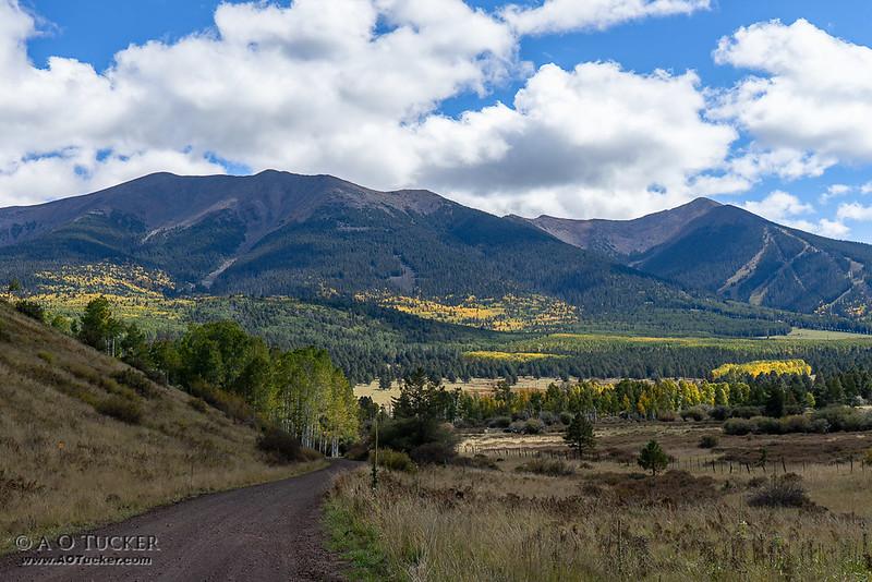 Vibrant Valley Vista