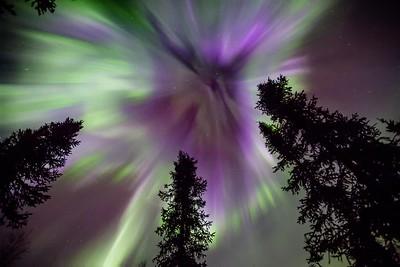 Aurora Corona