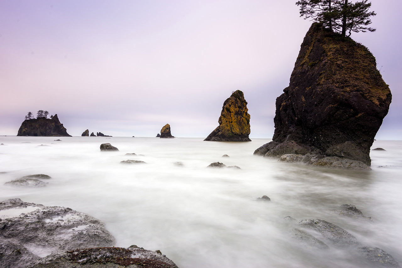 Morning at Point of the Arches, Shi Shi Beach