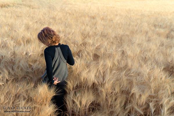 Awash In A Sea Of Grain