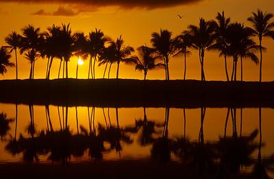 Sunset at Kalahuipuaa FIsh Ponds at Mauna Lani