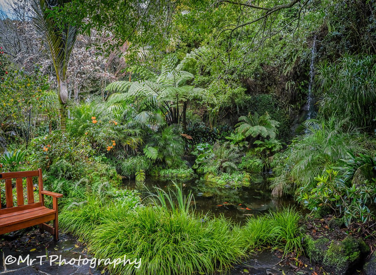 Cascade Eden Garden