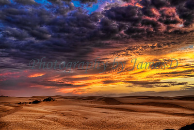 Trails in the Dunes
