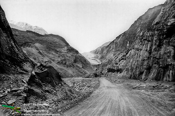Access road to the Franz Josef glacier Westland