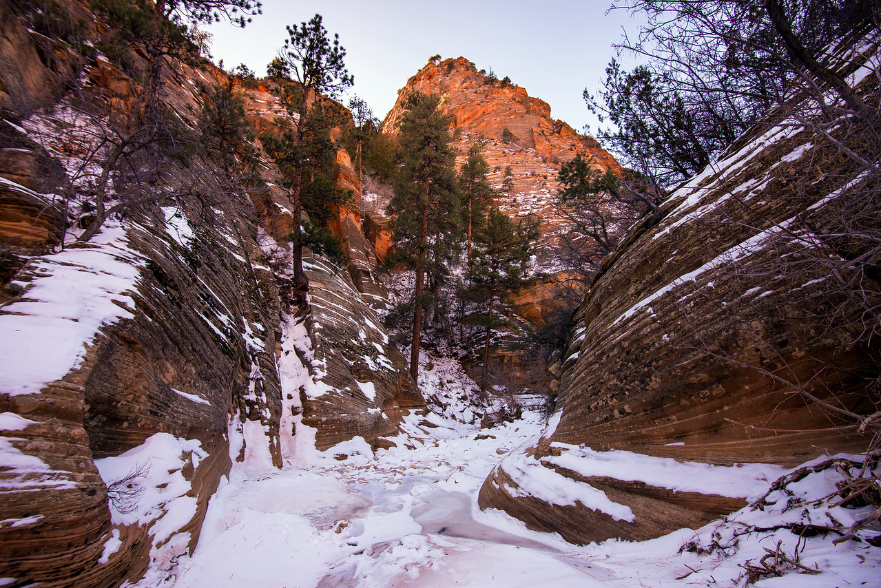 Clear Creek, Zion National Park