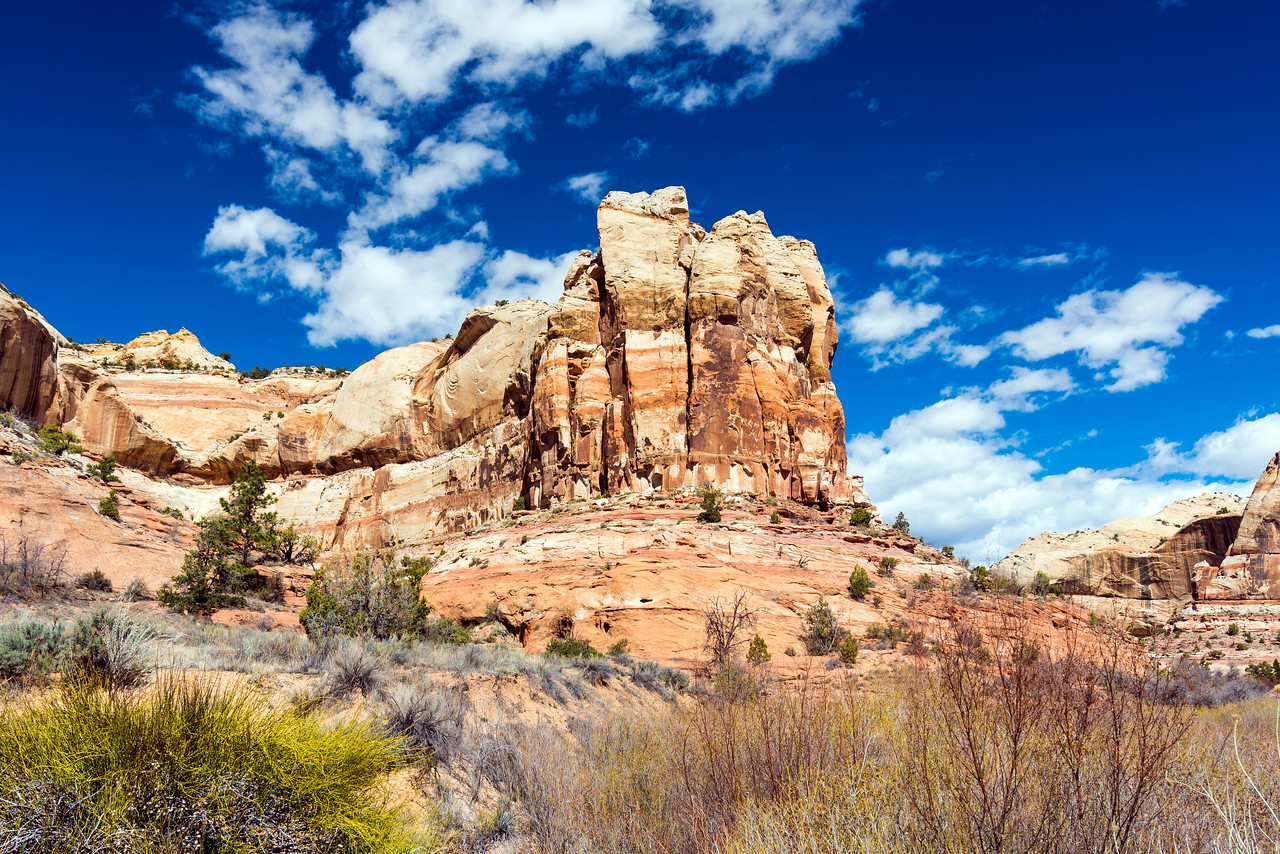 Pure desert goodness from the Calf Creek Trail, Grand Staircase-Escalante National Monument