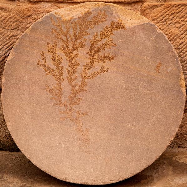 Decorative Stone Outside 5th Century Byzantine Church, Petra