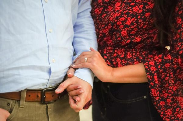 Shebl Engagement (15)